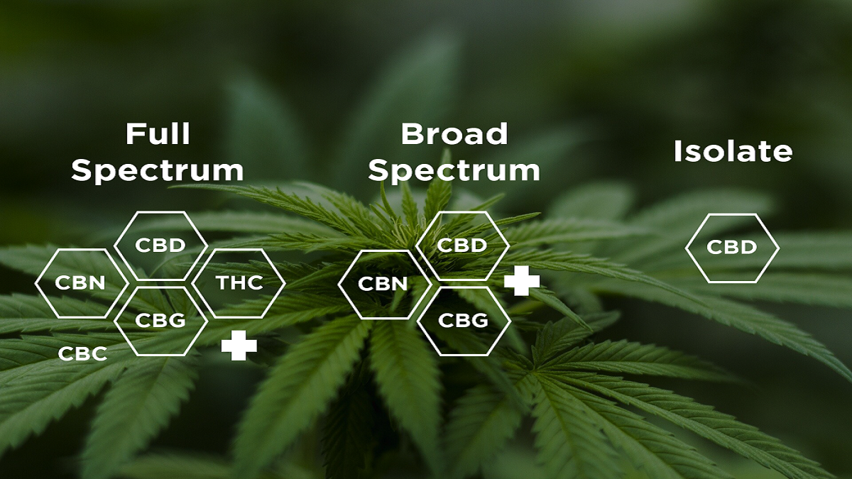 Full Spectrum vs Broad Spectrum vs Isolate CBD