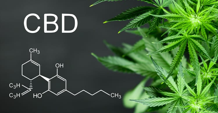 CBD – How It Can Help You