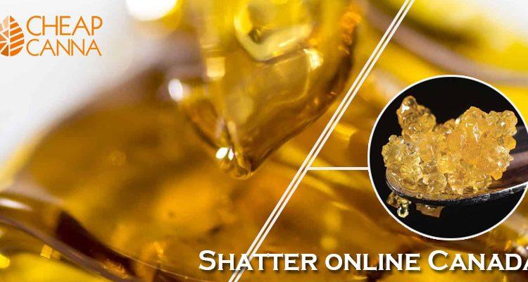 Shatter Online, Canada: A Definitive Guide to Shatter Batter